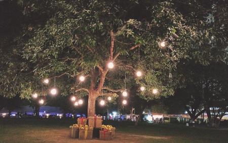 Garden lighting tree